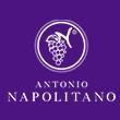 Antonio Napolitano