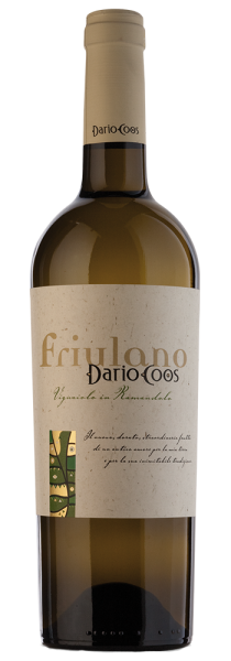 Friulano Friuli DOC 2020 - Dario Coos