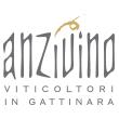 https://www.wineowine.it/pub/media//amasty/shopby/option_images/anzivino logo
