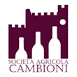 https://www.wineowine.it/pub/media//amasty/shopby/option_images/logo cambioni