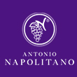 https://www.wineowine.it/pub/media//amasty/shopby/option_images/napolitano logo