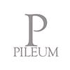 https://www.wineowine.it/pub/media//amasty/shopby/option_images/pileum