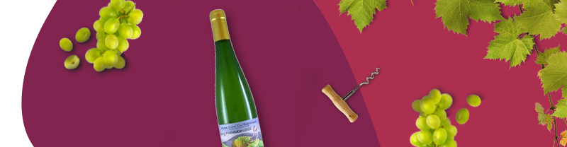vini francesi alsazia