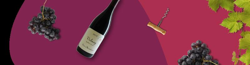 vini francesi borgogna