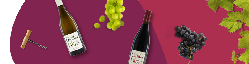 vini francesi roussillon