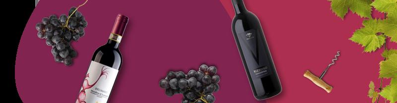 vini toscani