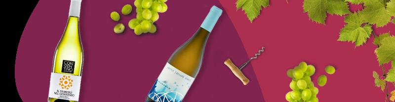 vino bianco online