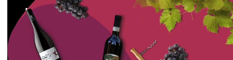 vino pinot nero