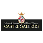 castel sallegg logo