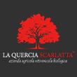 la quercia scarlatta logo