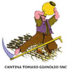 tomaso gianolio logo